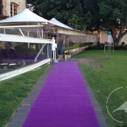 Purple carpet 1