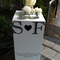 perspex plinth with decal